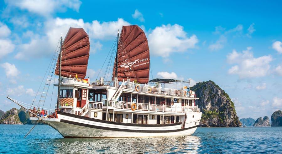 Swan Cruise