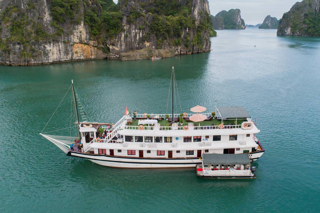 Swan Cruise 7