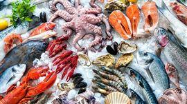 Cách vận chuyển hải sản sống đi xa