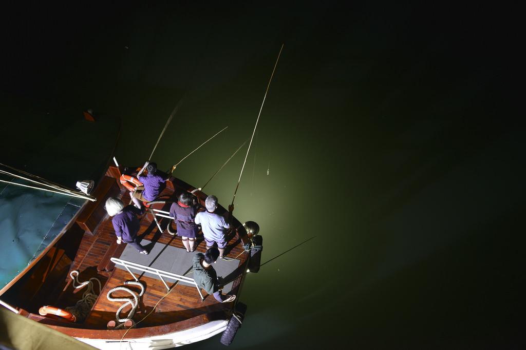 câu mực cùng du thuyền Athena Elegance