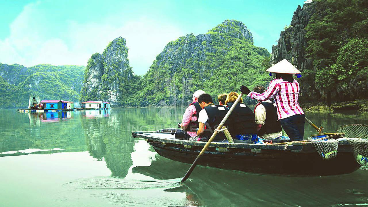 Chèo Thuyền Kayak Du Thuyền Swan