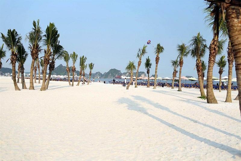 Review du lịch biển Bãi Cháy
