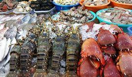 Kinh nghiệm mua hải sản ở Quảng Ninh tươi ngon không lo chặt chém